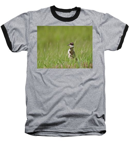 Young Killdeer In Grass Baseball T-Shirt