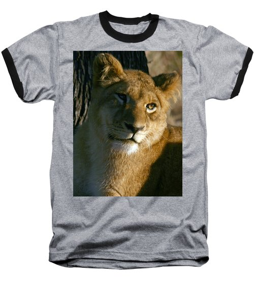 Young Lion Baseball T-Shirt