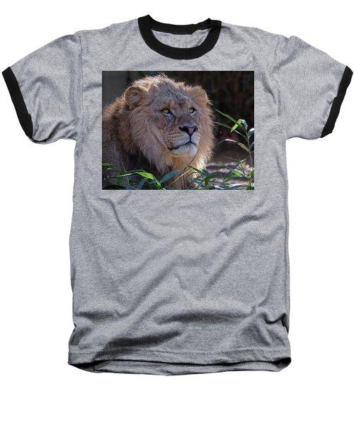 Young Lion King Baseball T-Shirt