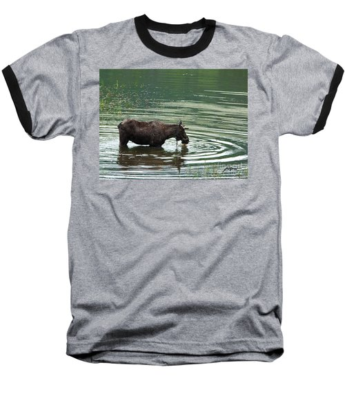 Young Moose In Pond Baseball T-Shirt