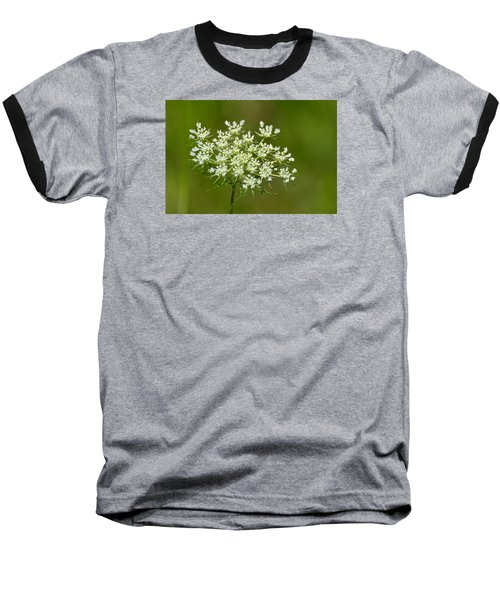 Baseball T-Shirt featuring the photograph Young Queen Anne's Lace  by Lyle Crump