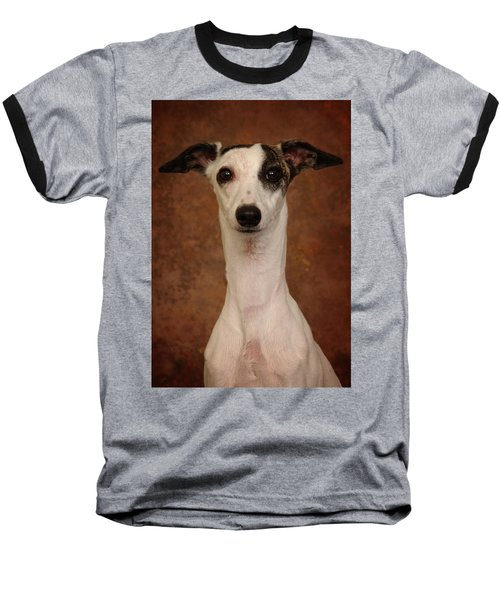 Young Whippet Baseball T-Shirt by Greg Mimbs
