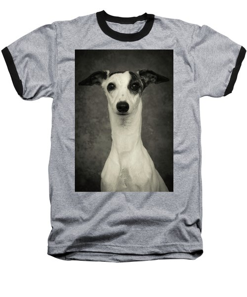 Young Whippet In Black And White Baseball T-Shirt by Greg and Chrystal Mimbs