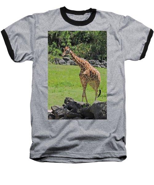 Youthful Baseball T-Shirt