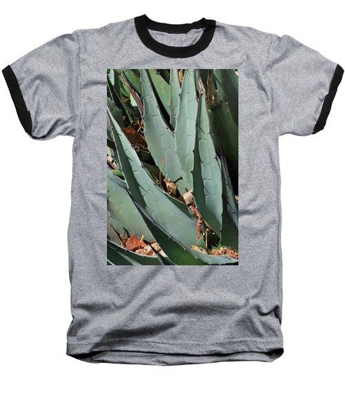 Yucca Leaves Baseball T-Shirt