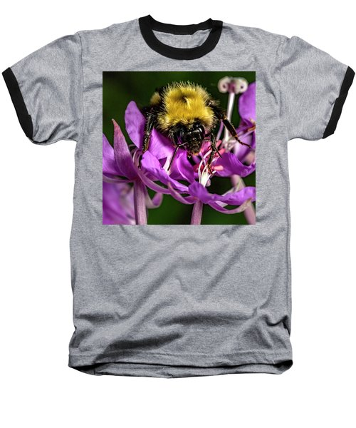 Baseball T-Shirt featuring the photograph Yummy Pollen by Darcy Michaelchuk