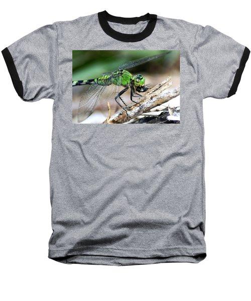 Yummy Baseball T-Shirt by Thomas Bomstad