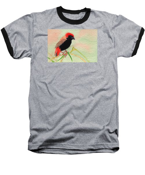 Zanzibar Red Bishop Baseball T-Shirt