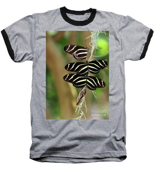 Zebra Butterflies Hanging On Baseball T-Shirt