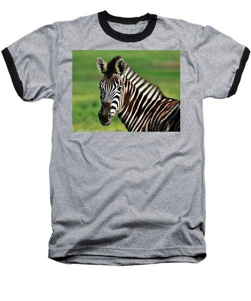Zebra Close Up Baseball T-Shirt by Werner Lehmann