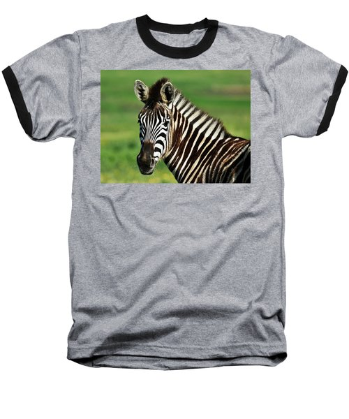 Zebra Close Up Baseball T-Shirt