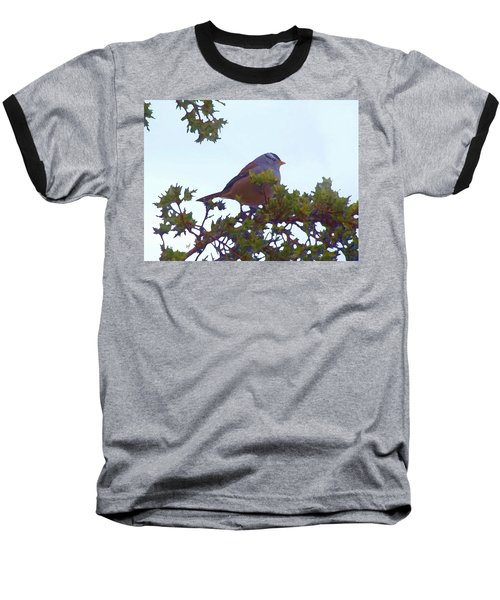 Baseball T-Shirt featuring the digital art White Crowned Sparrow In Cedar by Shelli Fitzpatrick