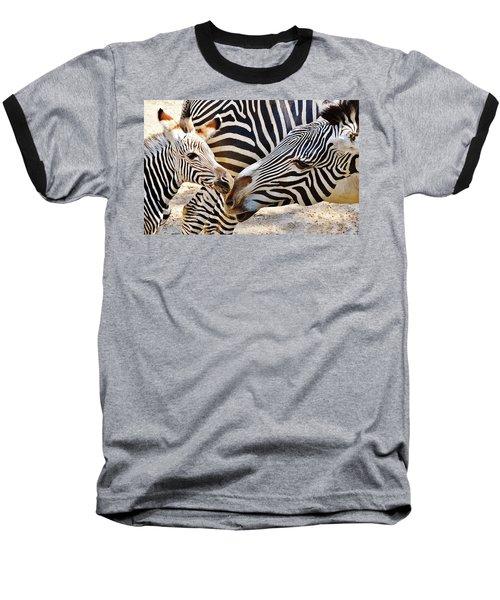 Zebra Mother And Calf Baseball T-Shirt