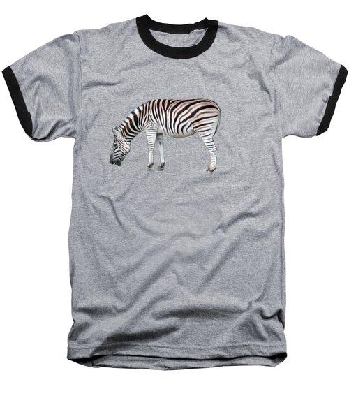 Zebra Baseball T-Shirt by Pamela Walton