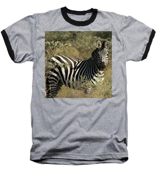 Zebra Portrait Baseball T-Shirt