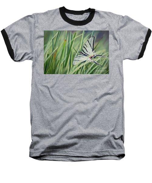 Zebra Swallowtail Baseball T-Shirt