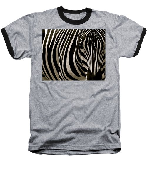 Zebra Up Close Baseball T-Shirt