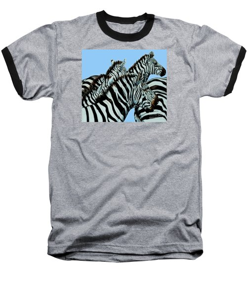Zebra's In A Herd Baseball T-Shirt by Cheryl Poland