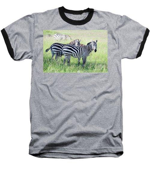 Zebras In Serengeti Baseball T-Shirt