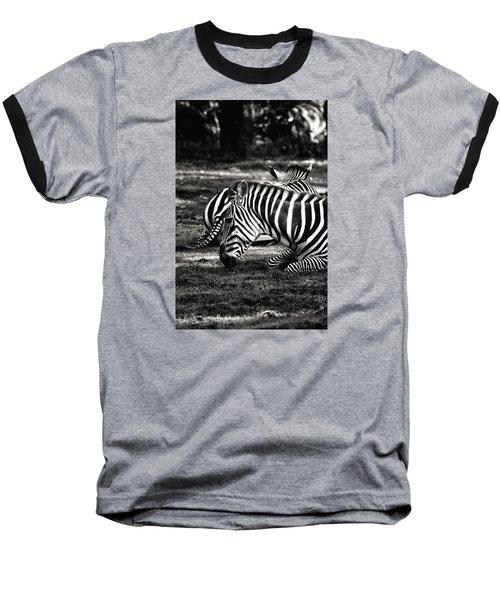 Zebras Baseball T-Shirt by Nikki McInnes