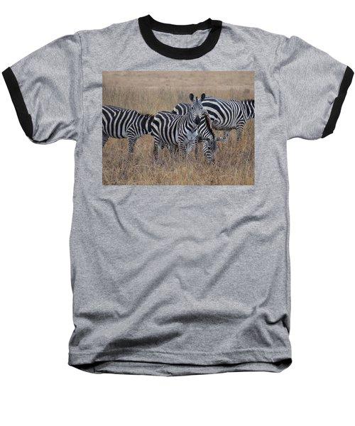 Zebras Walking In The Grass 2 Baseball T-Shirt by Exploramum Exploramum