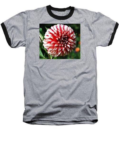 Zesty Dahlia Baseball T-Shirt