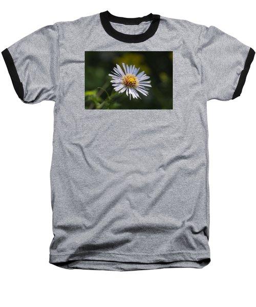 Zigzag Aster Baseball T-Shirt