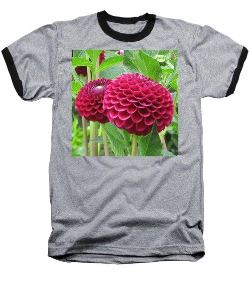 Zinnia Duet Baseball T-Shirt by Karen J Shine