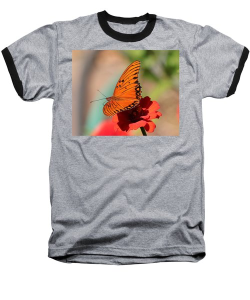 Zinnia With Butterfly 2669 Baseball T-Shirt