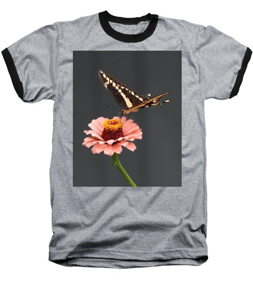 Zinnia With Butterfly 2702 Baseball T-Shirt