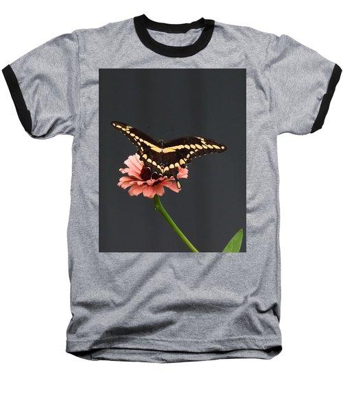 Zinnia With Butterfly 2708  Baseball T-Shirt
