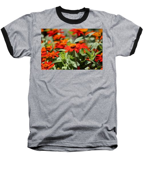 Zinnias In Autumn Colors Baseball T-Shirt