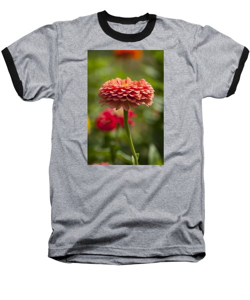 Zinnia Portrait Baseball T-Shirt