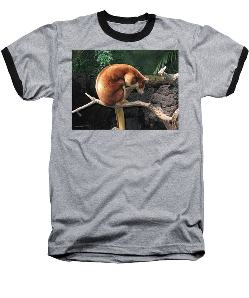 Zoo Animal Baseball T-Shirt