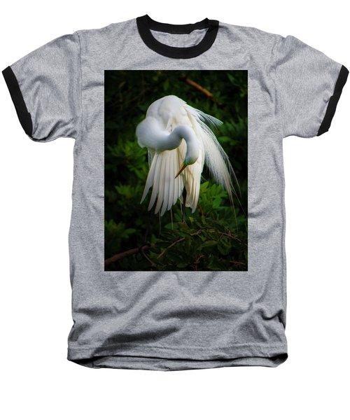 Breeding Plumage And Color Baseball T-Shirt