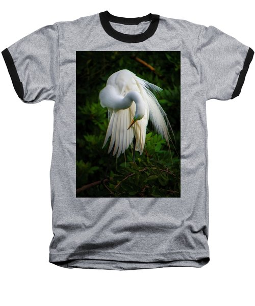 Breeding Plumage And Color Baseball T-Shirt