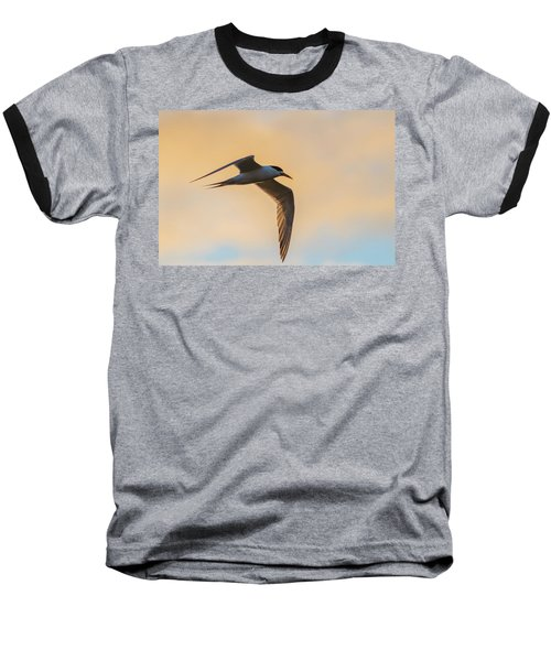 Crested Tern In The Early Morning Light Baseball T-Shirt