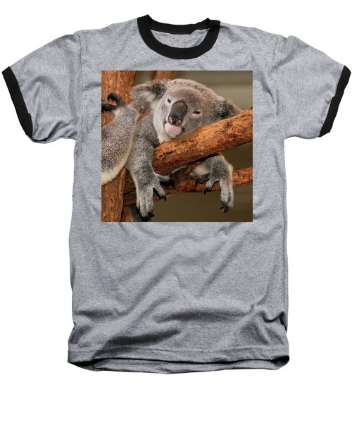 Cute Australian Koala Resting During The Day. Baseball T-Shirt