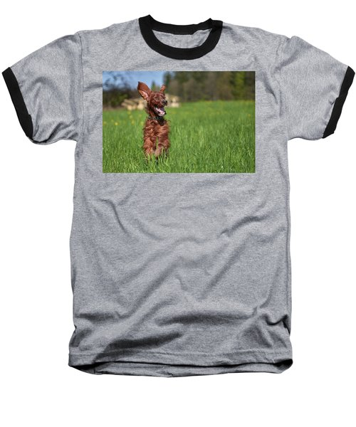 Happy Setter Baseball T-Shirt