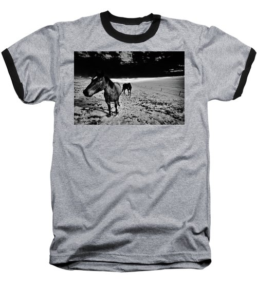 Baseball T-Shirt featuring the photograph Horses On The Palouse by David Patterson