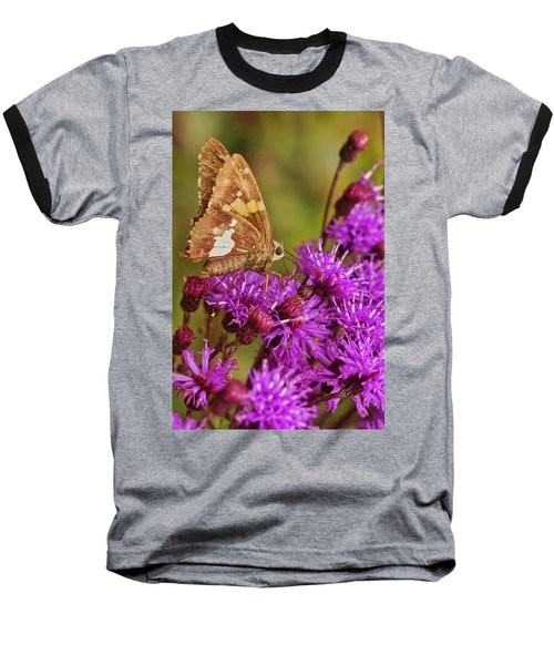 Moth On Purple Flowers Baseball T-Shirt