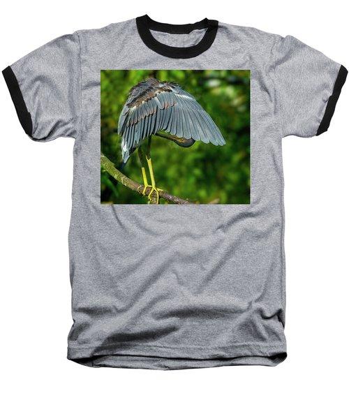 Preening Reddish Heron Baseball T-Shirt