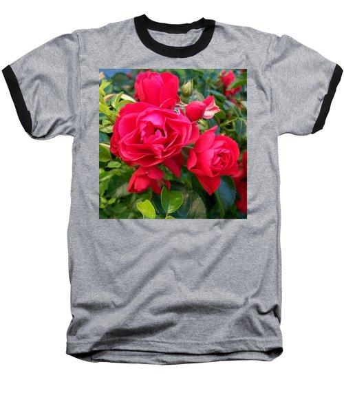 Rose Is A Rose  Baseball T-Shirt