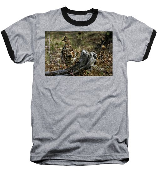 Ruffed Grouse 50701 Baseball T-Shirt