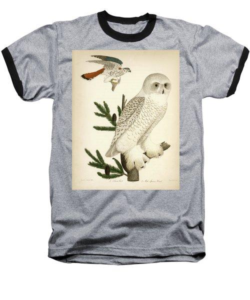 1. Snow Owl. 2. Male Sparrow-hawk. Baseball T-Shirt