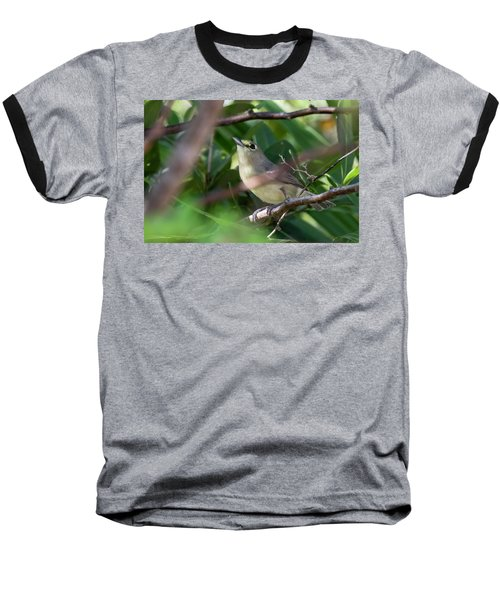 Thick-billed Vireo Baseball T-Shirt