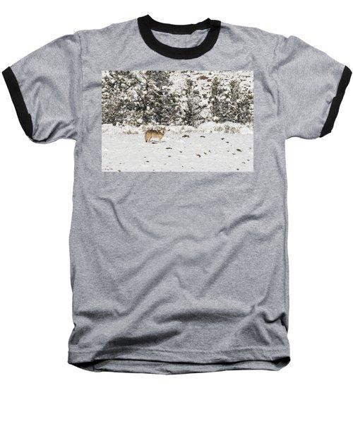 W16 Baseball T-Shirt