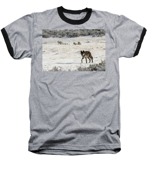 W19 Baseball T-Shirt