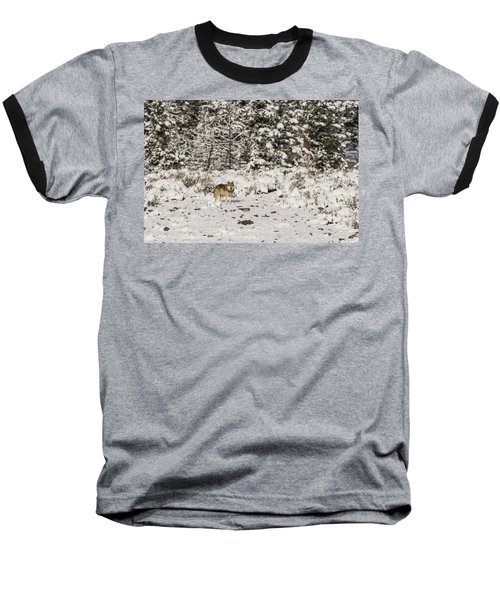 W20 Baseball T-Shirt