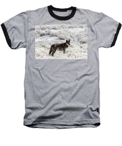 W23 Baseball T-Shirt